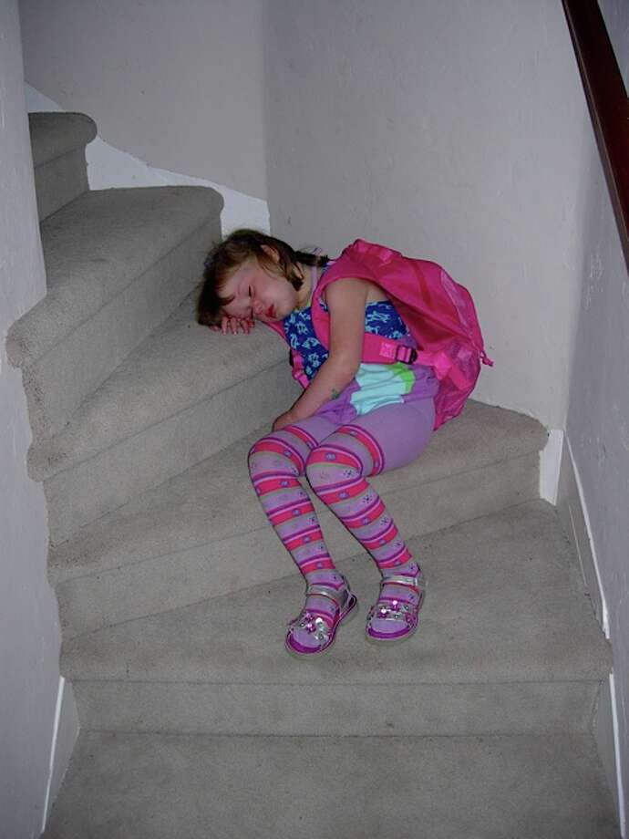 Snoozing on the stairs. Photo: Newman-erin