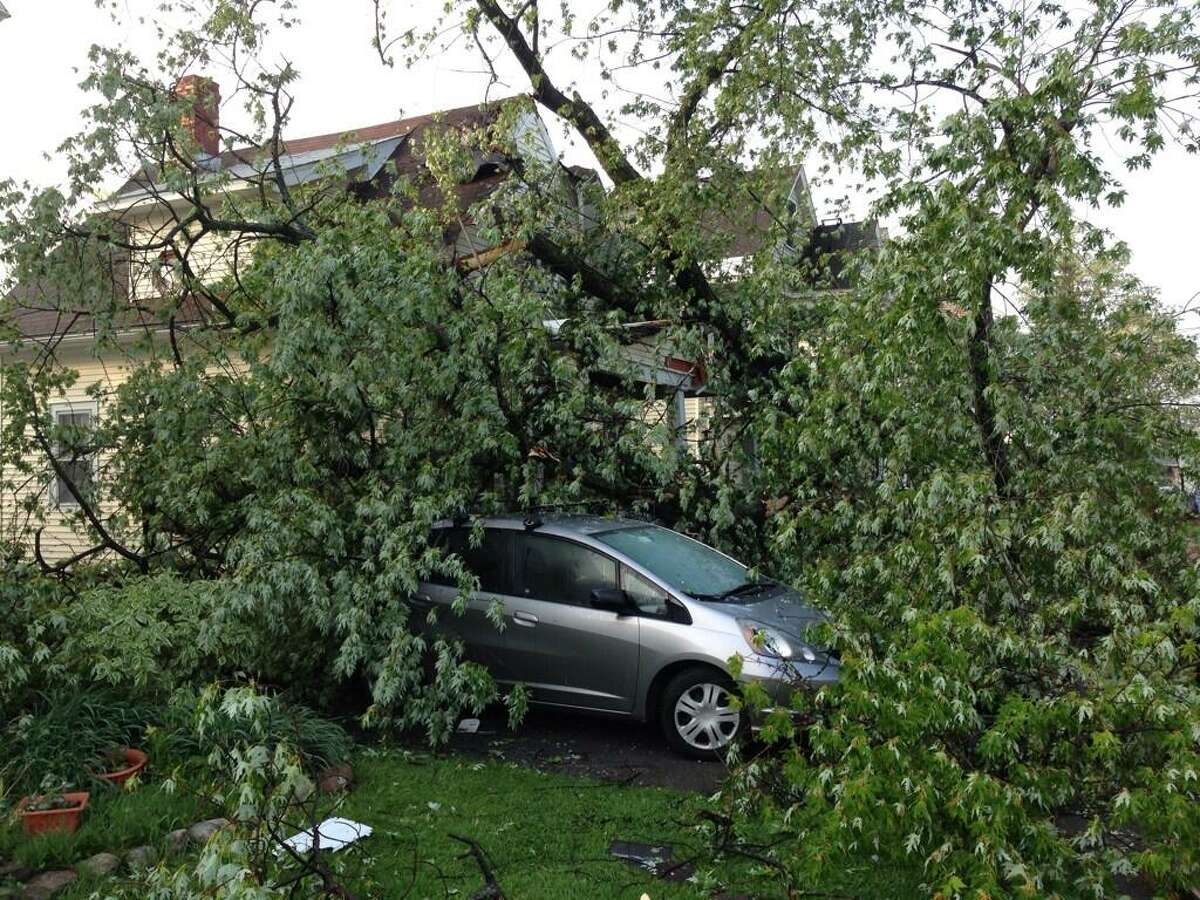 A tree sits on a car and a house at 421 Eleanor St. in Schenectady on Thursday, May 30, 2013. (SKIP DICKSTEIN / Times Union)