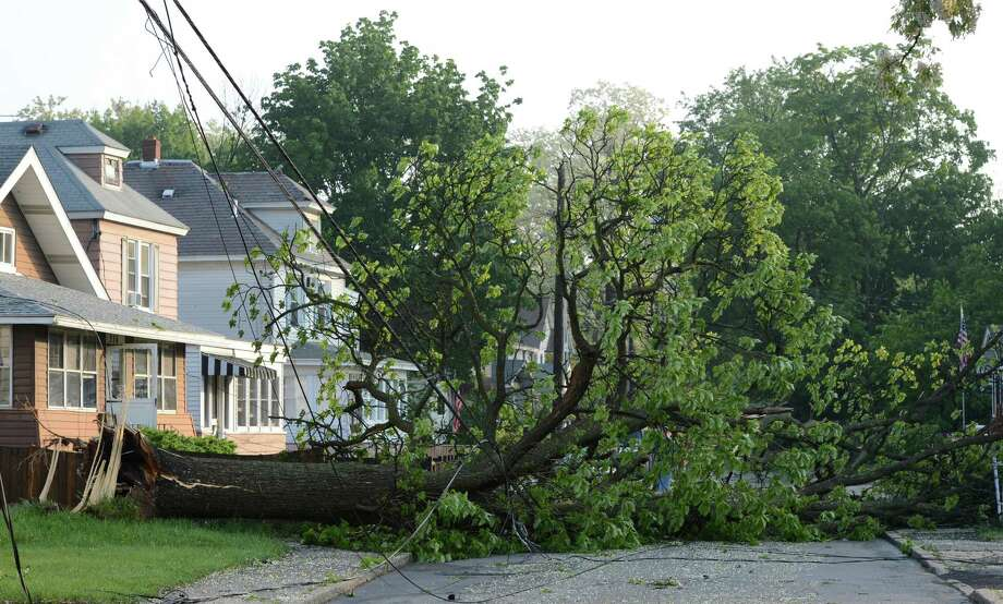 A tree lies in the middle of Perry Street May 31, 2013 after a storm hit the area in Schenectady, N.Y. Photo: Skip Dickstein