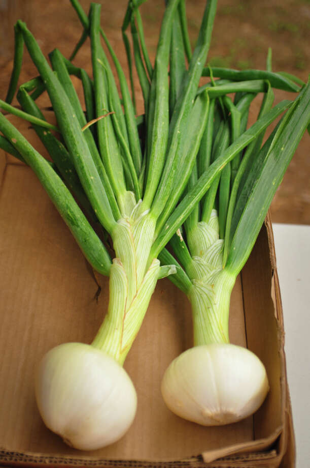 Texas state vegetable: Sweet onion Photo: Dtimiraos, Getty Images / (c) dtimiraos