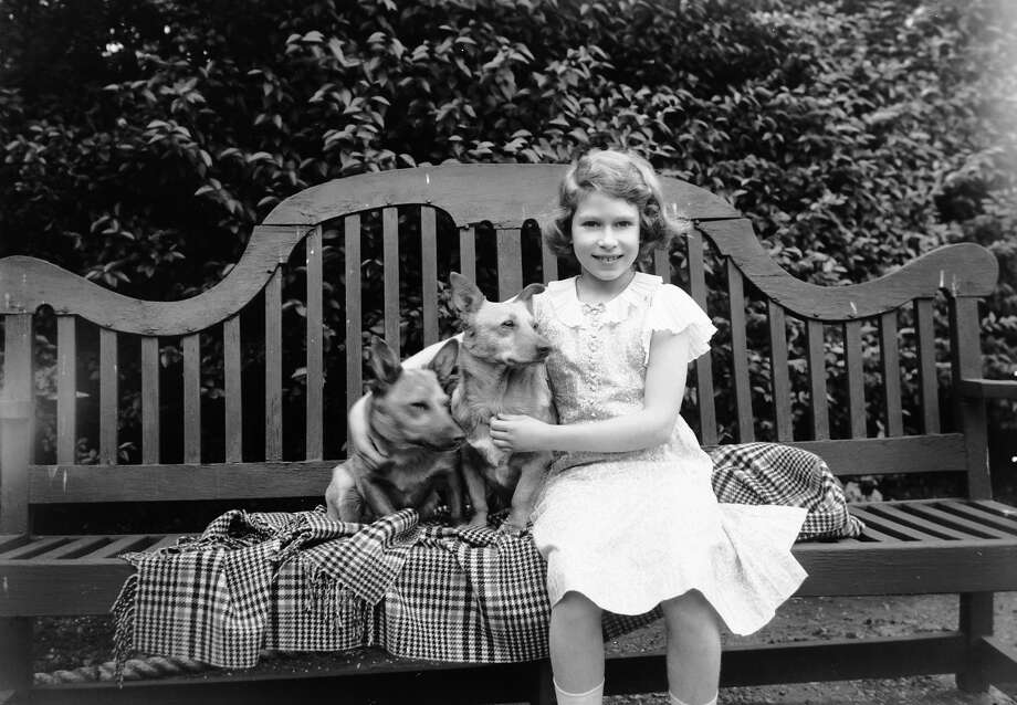 Princess Elizabeth sitting on a garden seat with two corgi dogs at her home on 145 Piccadilly, London in 1936. Photo: Lisa Sheridan, Getty Images / Hulton Royals Collection