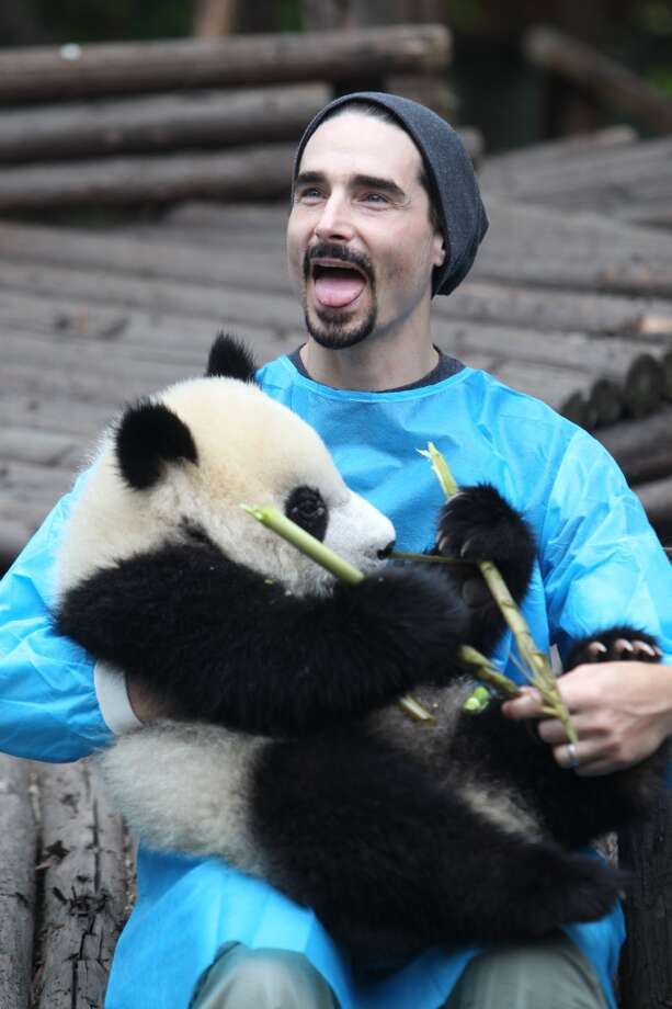 Kevin Richardson of Backstreet Boys holds a giant panda at the Giant Panda Breeding Research Institute during their China Tour on May 30, 2013 in Chengdu, Sichuan Province of China.  (Photo by ChinaFotoPress/ChinaFotoPress via Getty Images)