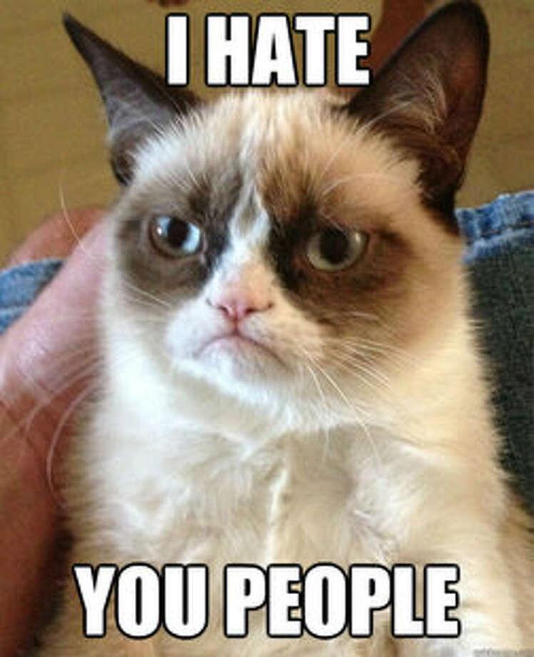 A Grumpy Cat meme.