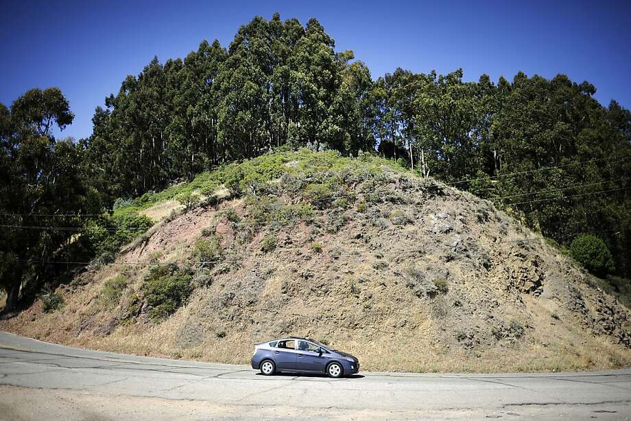 In this file photo, a car passes a stand of eucalyptus trees on Grizzly Peak Rd. above Claremont Canyon in the Oakland/Berkeley Hills. Photo: Michael Short, Special To The Chronicle