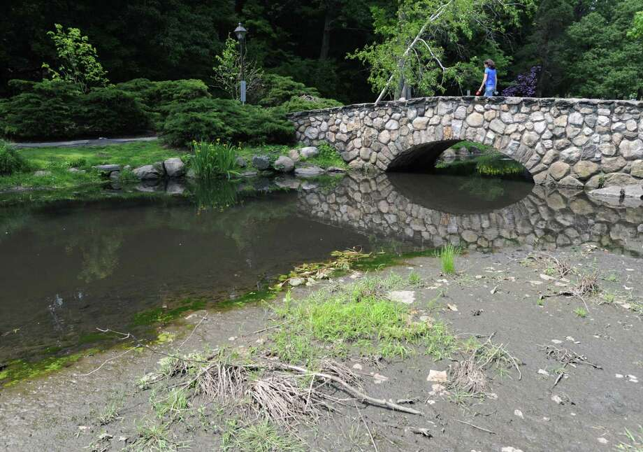 Mud, silt and debris surround the picturesque stone bridge that crosses Binney Park Pond in Old Greenwich, Thursday, May 30, 2013, Photo: Bob Luckey / Greenwich Time