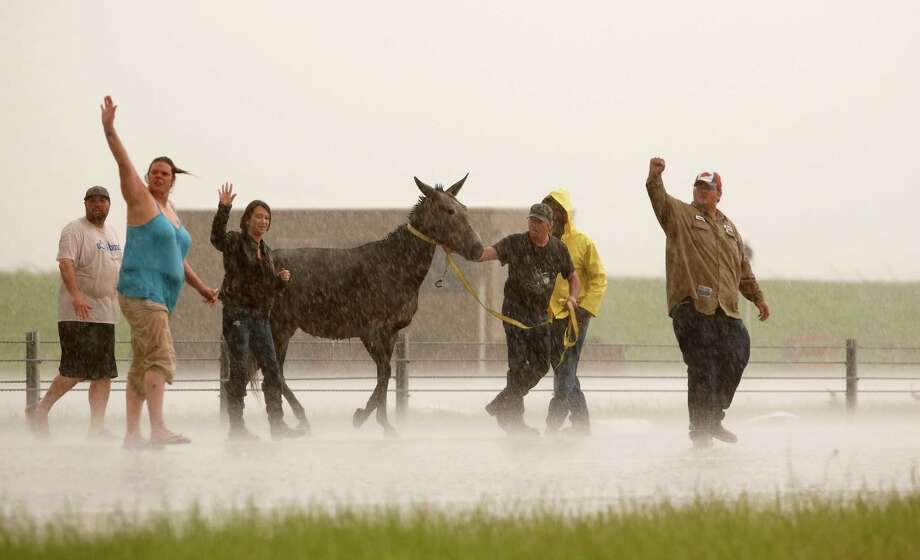 People stop traffic to help one of several loose horses across I-40 just east of 81 in El Reno, Okla., after a tornado moved through the area on Friday, May 31, 2013. (AP Photo/The Oklahoman, Jim Beckel)  Photo: AP
