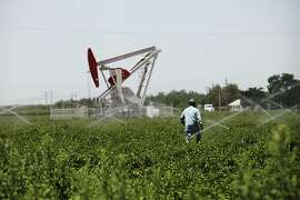 A farmer walks through a field near oil rigs in Shafter, Calif., May 21, 2013. The increasing use of hydraulic fracturing by oil companies in the region has created competition for water with farmers and has threatened contamination of the land and groundwater. (Emily Berl/The New York Times)