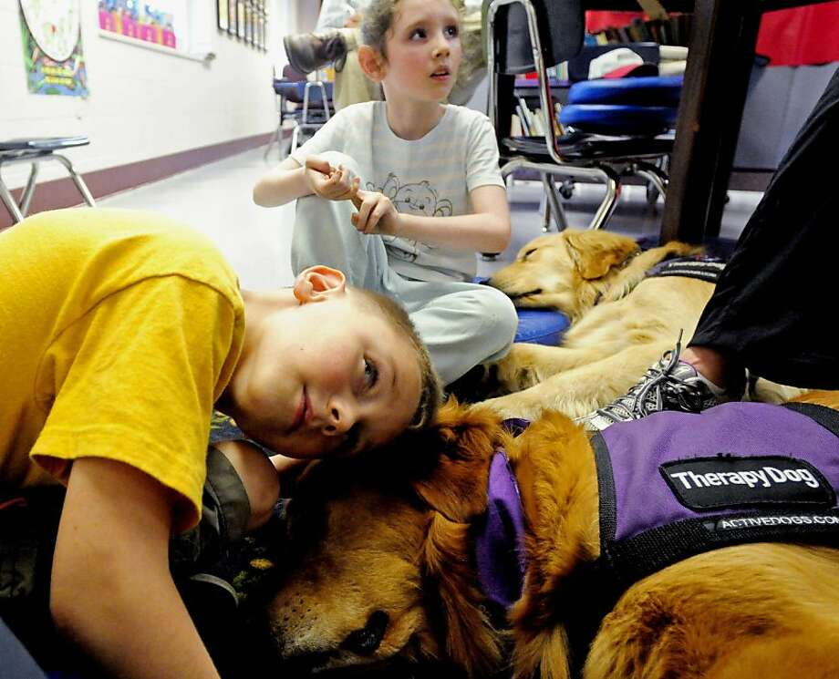 The exhausting life of a therapy dog: North Side Primary Care Center in Herrin, Ill., 