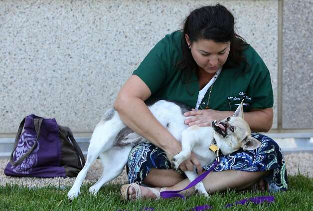 """Veterinary technician Dawn Gillette bids farewell to Kabang, the playful survivor Gillette calls """"a real character,"""" who now has a clean bill of health. Photo: Liz Hafalia, The Chronicle"""