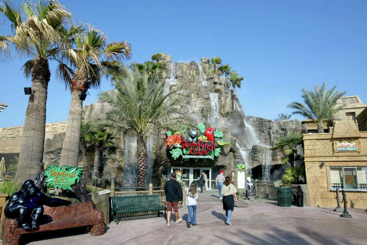 --for business story-- Rainforest Cafe, 53rd and Seawall Blvd., Galveston. Craig H. Hartley/Special to the Chronicle