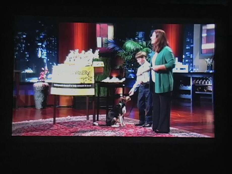 "Ryan Kelly, the 11-year-old owner of Ryan's Barkery, secured an investment of $25,000 on a recent episode of ""Shark Tank."""