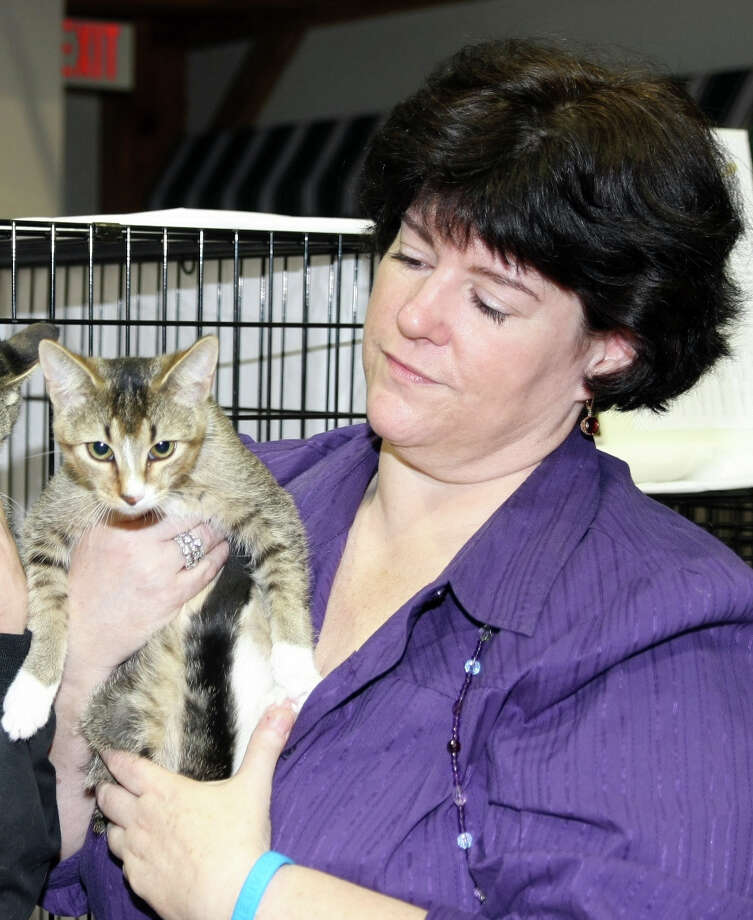Janice Bouton of Strays and Others holds an adolescent cat. Founded in 1985, the organization says it has provided medical care and spaying and neutering for more than 4,300 animals, and receives 5,000 calls per year. Photo: Contributed