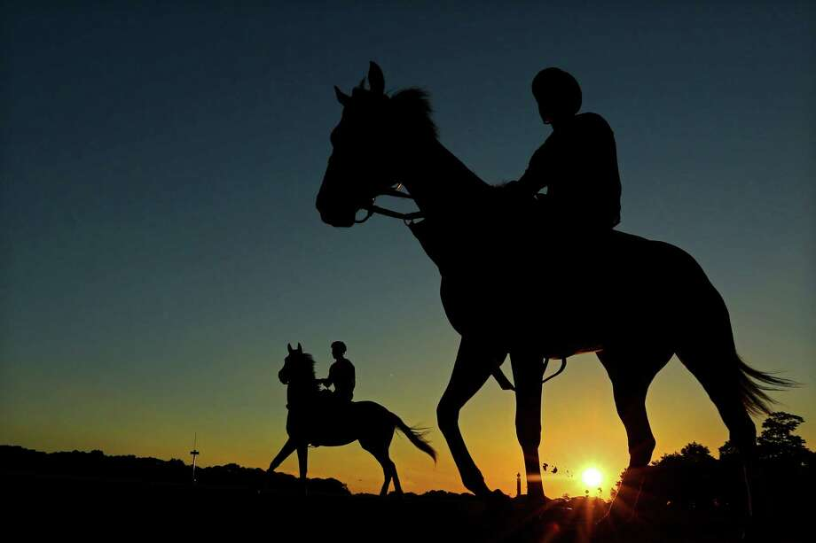 ELMONT, NY - JUNE 04:  A general view of horses heading out to the track to train at Belmont Park on June 4, 2013 in Elmont, New York.  (Photo by Al Bello/Getty Images)  *** BESTPIX *** Photo: Al Bello, Getty Images / 2013 Getty Images