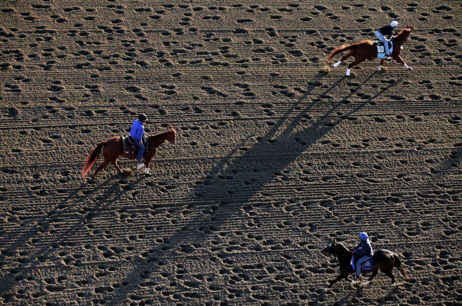 Horses work on the track at Belmont Park, Wednesday, June 5, 2013 in Elmont, N.Y. The Belmont Stakes horse race is Saturday. Photo: Mark Lennihan, AP / AP