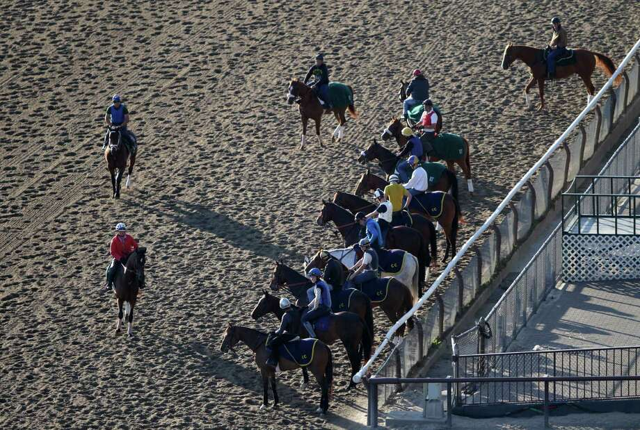 Horses enter the track for morning workouts at Belmont Park, Wednesday, June 5, 2013 in Elmont, N.Y. The Belmont Stakes horse race is Saturday. Photo: Mark Lennihan, AP / AP