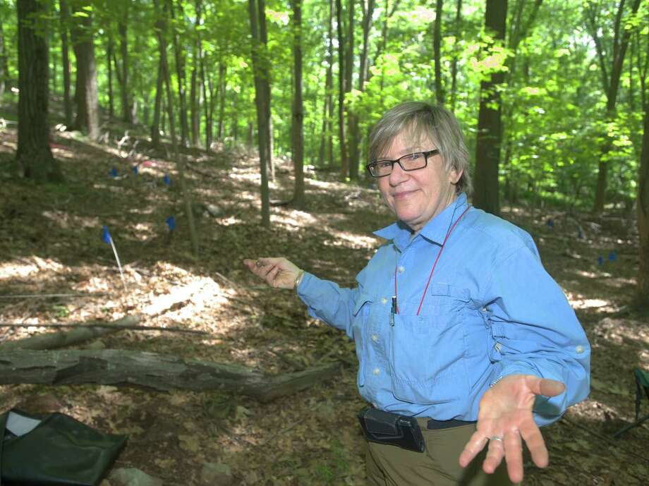 Dr Laurie Weinstein, from Western Connecticut State University in Danbury Conn, at an archaeological dig site in Redding, Conn. on Monday June 5, 2013. Weinstein is one of three professors teaching the class Archaeological Field Studies this summer. The dig is at what is believed to be the site of a Revolutionary War camp which was part of a detachment headed by General Israel Putnam. Photo: H John Voorhees III
