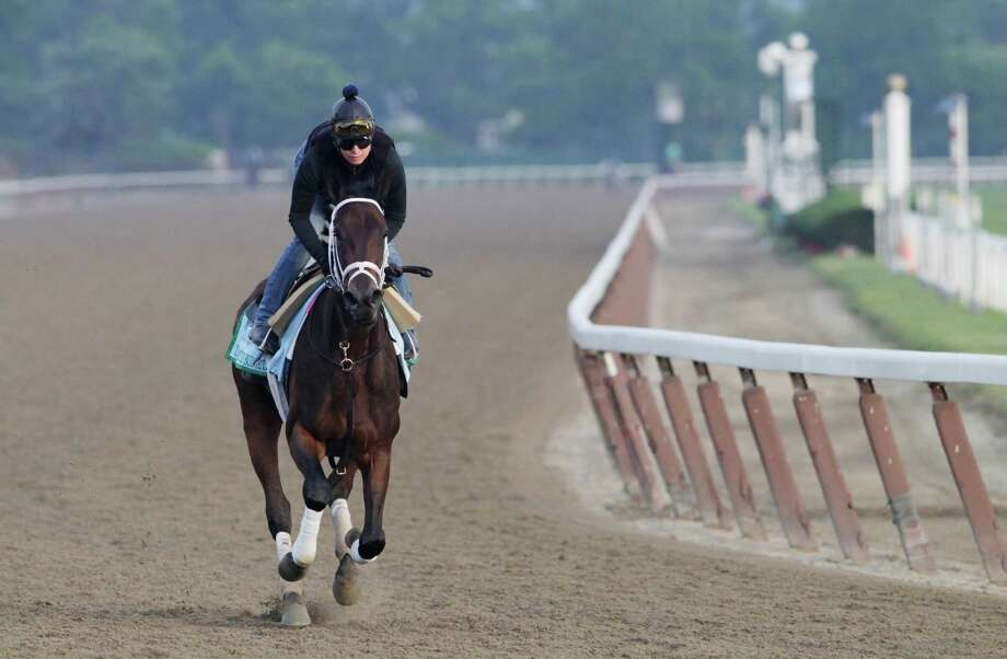 Unlimited Budget gallops on the track at Belmont Park during a morning workout Thursday, June 6, 2013 in Elmont, N.Y. The filly is entered in Saturday's Belmont Stakes horse race. Photo: Mark Lennihan, AP / AP