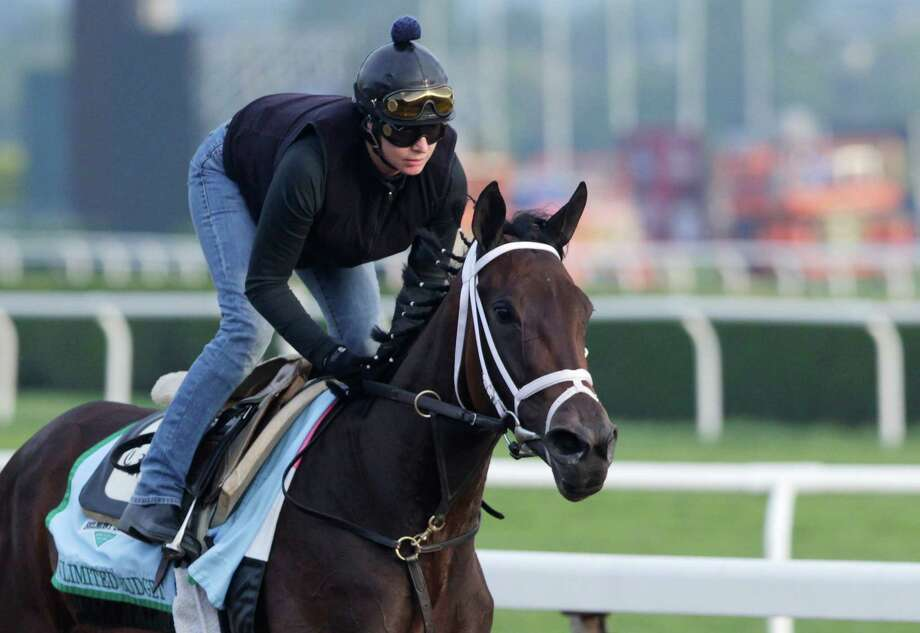 Unlimited Budget gallops on the track at Belmont Park during a morning workout Thursday, June 6, 2013 in Elmont, N.Y. The filly is entered in Saturday's Belmont Stakes horse race. (AP Photo/Mark Lennihan) Photo: Mark Lennihan