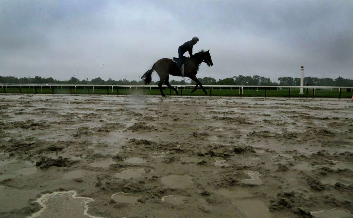 A horse gallops on the rain-soaked track at Belmont Park during a morning workout Friday, June 7, 2013 in Elmont, N.Y. Saturday is the Belmont Stakes horse race.