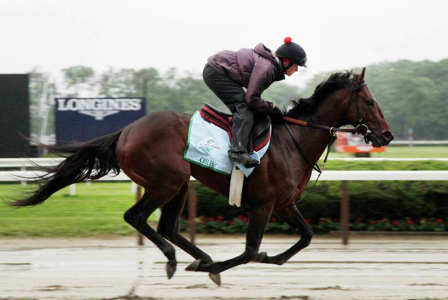 Exercise rider Jennifer Patterson takes Orb for a gallop on the track at Belmont Park,  Friday, June 7, 2013 in Elmont, N.Y. Orb is entered in Saturday's Belmont Stakes horse race. Photo: Mark Lennihan, AP / AP