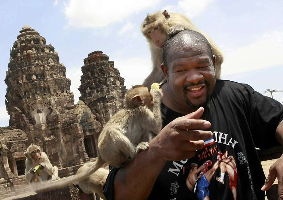 Back in the ring at 45? Riddick-ulous! Monkeys tag-team former world heavyweight boxing champion Riddick Bowe at a shrine in Thailand's Lopburi province. Bowe is stepping out of retirement next week to make his debut as a Muay Thai fighter. Muay Thai is a brutal martial art that makes boxing look gentlemanly. Photo: Apichart Weerawong, Associated Press