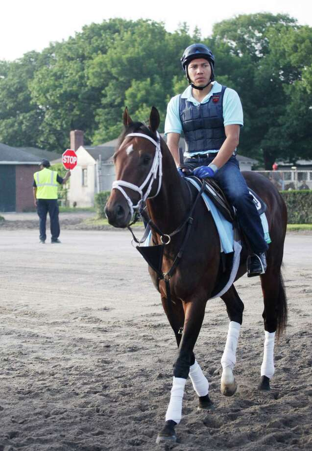 Overanalyze enters the track at Belmont Park for a morning workout Thursday, June 6, 2013 in Elmont, N.Y. Overanalyze is entered in Saturday's Belmont Stakes horse race. (AP Photo/Mark Lennihan) Photo: Mark Lennihan