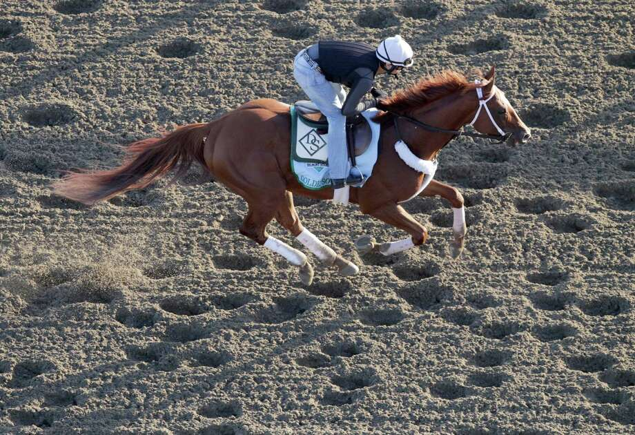 Golden Soul gallops on the track during a morning workout at Belmont Park, Wednesday, June 5, 2013 in Elmont, N.Y. Golden Soul is entered in Saturday's Belmont Stakes horse race. (AP Photo/Mark Lennihan) Photo: Mark Lennihan
