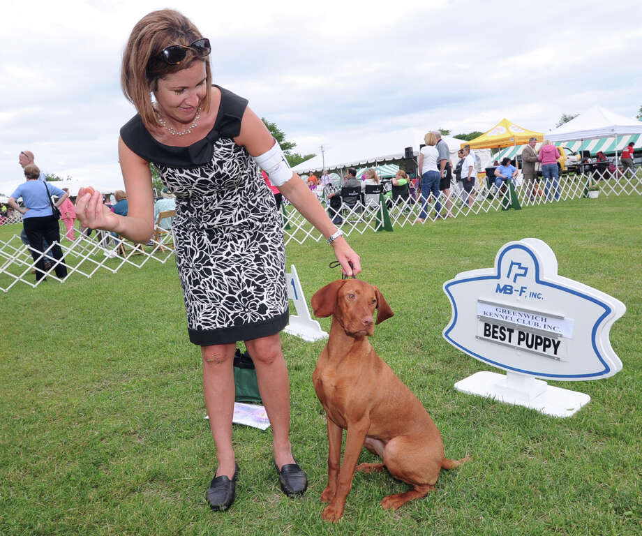 Dog handler Jenna Iacobellis and Tess, a Vizsla, during the Greenwich Kennel Club Dog Show at Taylor Farm Park, Norwalk, Saturday, June 7, 2013. Tess won best puppy at the show. Photo: Bob Luckey / Greenwich Time