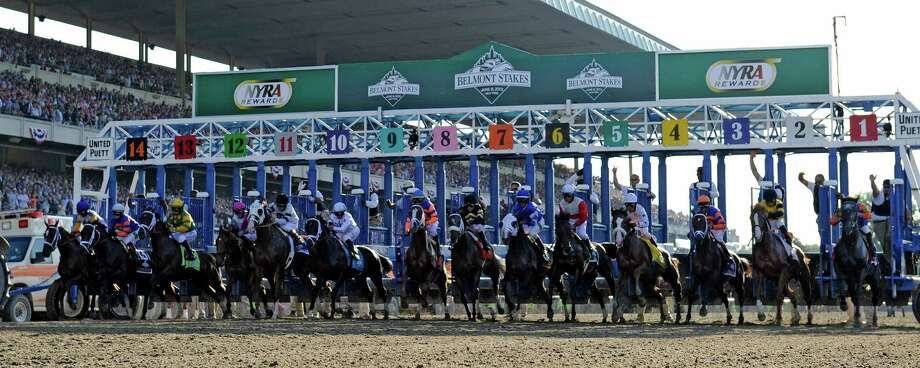 The field breaks the gate at the start of the 145th running of The Belmont Stakes June 8, 2013 at Belmont Park in Elmont, N.Y.  (Skip Dickstein/Times Union) Photo: SKIP DICKSTEIN