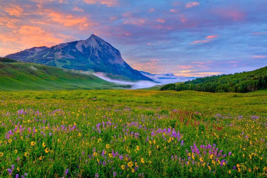 A field of mountain blooms  shows why the Colorado legislature named Crested Butte the state's wildflower capital. The 27th annual Crested Butte Wildflower Festival takes place July 8-14, with several guided walks before and after.