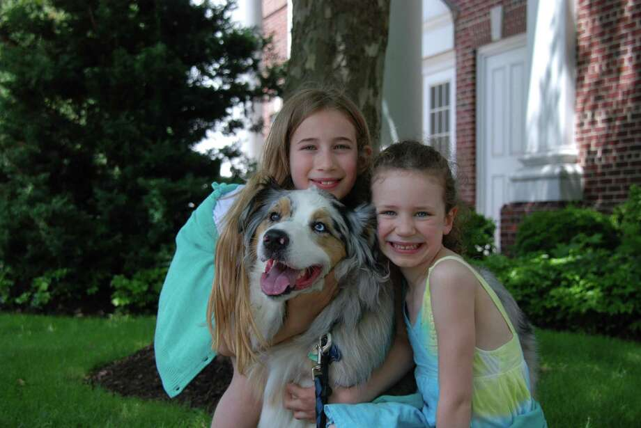 "Sophia and Talia Hull cuddle up with their dog ""Ego"" for a quick picture during the ""New Canaan Goes to the Dogs - AGAIN"" event on Sunday, June 9, 2013. Photo: Jeanna Petersen Shepard / New Canaan News Freelance"