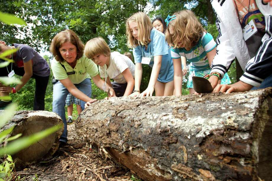 Naturalist Laurie Hudson, far left, looks under a log with, from left, Soloman Seay, Jesse Sullivan, Isabel Hugetz and other campers for insects and other living things while gathering items for a terrarium during the first day of the Nature Trekkers Summer Camp at the Houston Arboretum & Nature Center Monday, June 10, 2013, in Houston. Photo: Brett Coomer, Houston Chronicle / © 2013 Houston Chronicle