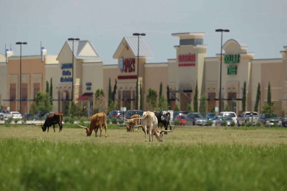 At one time only homes and Longhorn dotted the prairie in Katy, but the city off Interstate 10 has transformed itself into a shopping mecca and growing office area. Photo: Karen Warren, Staff / © 2013 Houston Chronicle