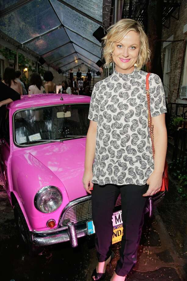 NEW YORK, NY - JUNE 10:  Amy Poehler attends the Stella McCartney Spring 2014 Collection Presentation at West 10th Street on June 10, 2013 in New York City.  (Photo by Randy Brooke/Getty Images)