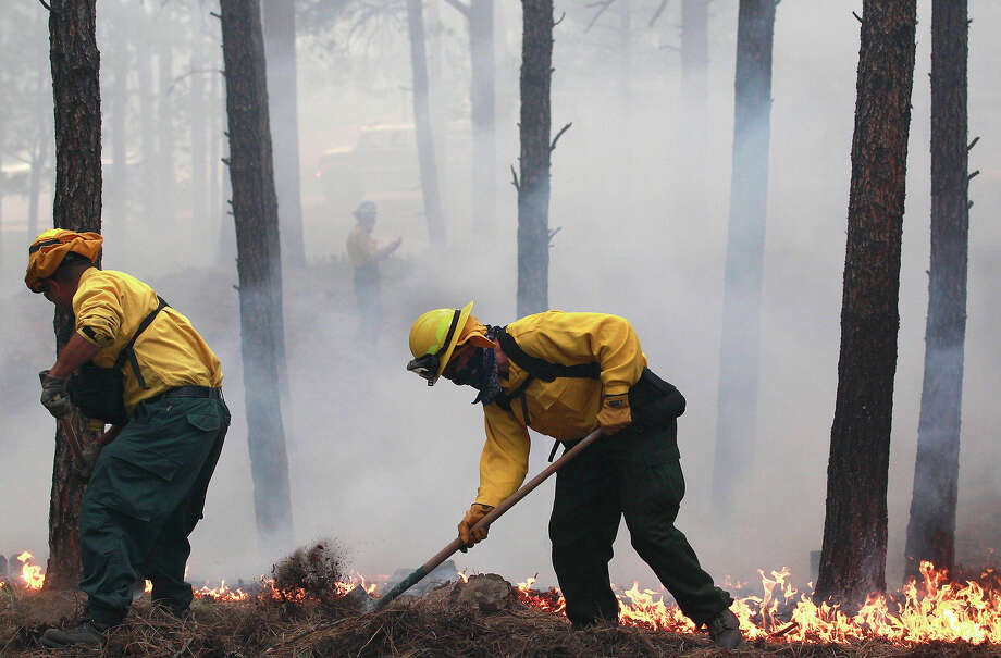 Black Forest Fire Dept. officers burn off natural ground fuel in an evacuated neighborhood, prepping the area for the encroachment of the wildfire in the Black Forest area north of Colorado Springs, Colo., on Wednesday, June 12, 2013. The number of houses destroyed by the Black Forest fire could grow to around 100, and authorities fear it's possible that some people who stayed behind might have died. (AP Photo/Brennan Linsley) Photo: Brennan Linsley, ASSOCIATED PRESS / AP2013