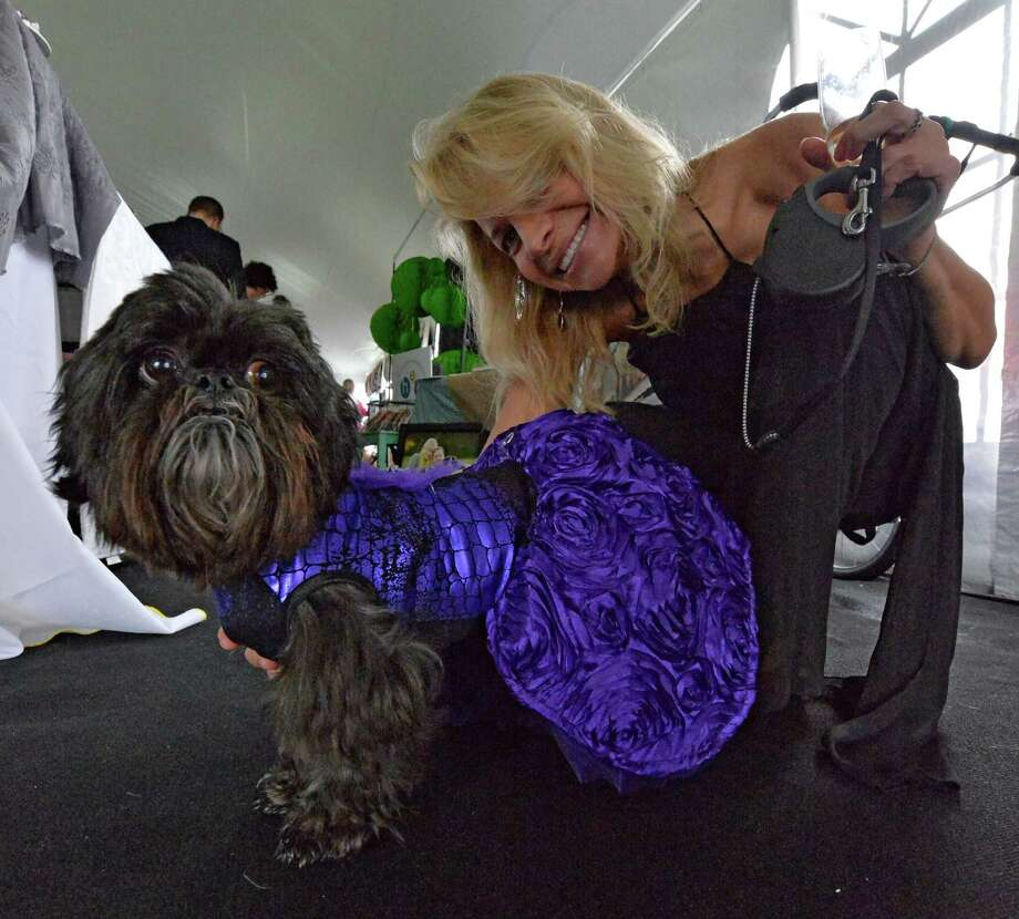 Christine Smith accompanies Tucker in his dress at the American Cancer Society's annual fundraiser Dogs & Divas Fashion Show Thursday June 13, 2013 at the Saratoga National Golf Course in Saratoga Springs, N.Y.     (Skip Dickstein/Times Union) Photo: SKIP DICKSTEIN / 00022794A