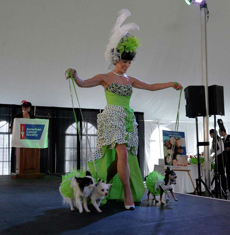 Michele Riggi and four of her dogs walk the runway at the American Cancer Society's annual fundraiser Dogs & Divas Fashion Show Thursday June 13, 2013 at the Saratoga National Golf Course in Saratoga Springs, N.Y.     (Skip Dickstein/Times Union) Photo: SKIP DICKSTEIN / 00022794A