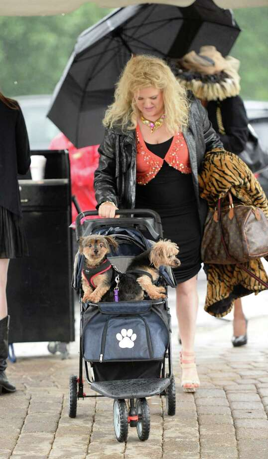 Mary Martin runs under the awning and away from the rain with her two dogs Francois and Geppetto at the American Cancer Society's annual fundraiser Dogs & Divas Fashion Show Thursday June 13, 2013 at the Saratoga National Golf Course in Saratoga Springs, N.Y.     (Skip Dickstein/Times Union) Photo: SKIP DICKSTEIN / 00022794A