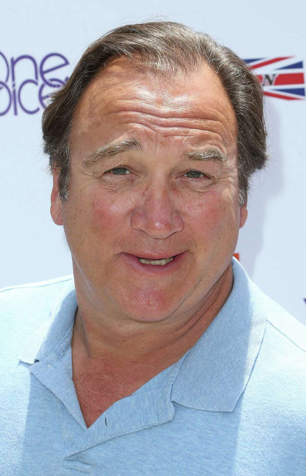 BEVERLY HILLS, CA - JUNE 02: Actor Jim Belushi attends the Seventh Annual Kidstock Music and Art Festival to benefit One Voice Scholars, at the Greystone Mansion on June 2, 2013 in Beverly Hills, California. (Photo by Frederick M. Brown/Getty Images)