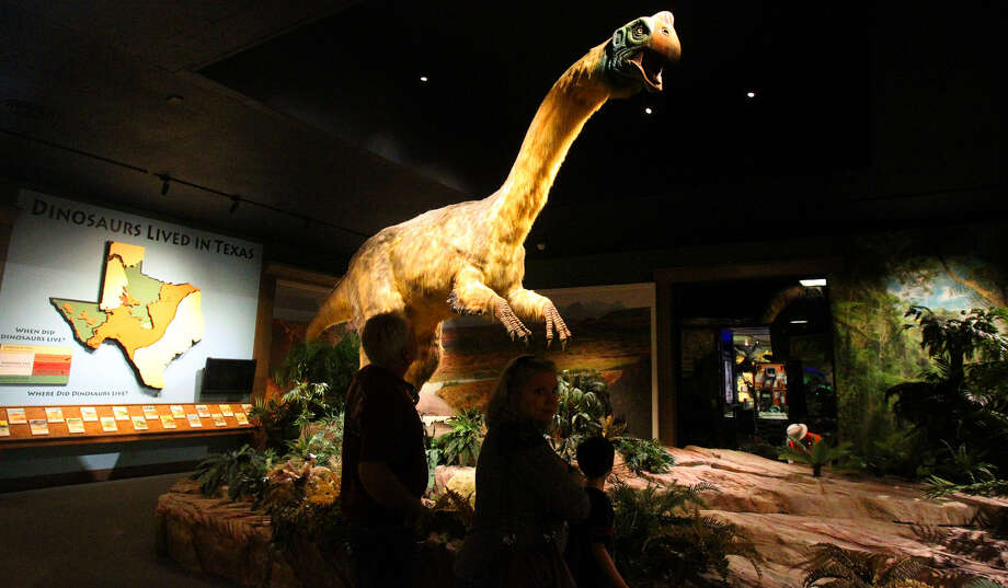 "A replica of a Gigantoraptor dinosaur is on display at the Witte Museum as part of the exhibition ""Dinosaurs Unearthed: Bigger. Better. Feathered ..."" Photo: John Davenport / San Antonio Express-News"