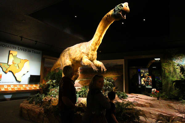 """A replica of a Gigantoraptor dinosaur is on display at the Witte Museum as part of the exhibition """"Dinosaurs Unearthed: Bigger. Better. Feathered ..."""""""