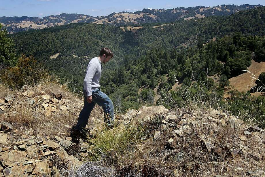 Brian Pickett, a forester for the Conservation Fund, walks above the eastern edge of the newly purchased 16,645-acre Preservation Ranch redwood forest near Annapolis, saving it from being plowed for vineyards. Photo: Michael Macor, The Chronicle