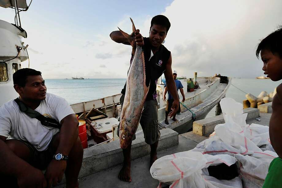 In 2012, revenue from fishing licenses accounted for half of Kiribati's national budget of $120 million. The 33 atolls in the Pacific that make up the impoverished country have few natural resources. Photo: The AGE, Fairfax Media Via Getty Images