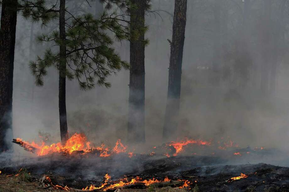 Trees smolder in the midst of the Black Forest Fire on June 13, 2013.  (AP Photo/The Denver Post, Helen H. Richardson) Photo: Helen H. Richardson, MBR / THE DENVER POST