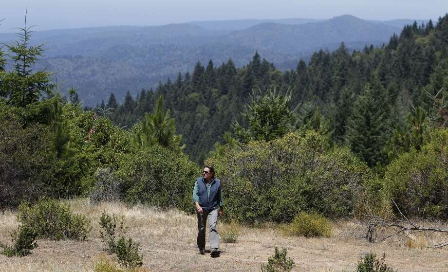 Chris Kelly, the California Director for the The Conservation Fund on a ridge top above the Preservation Ranch property on Tues. June 11, 2013 near Annapolis, Calif.
