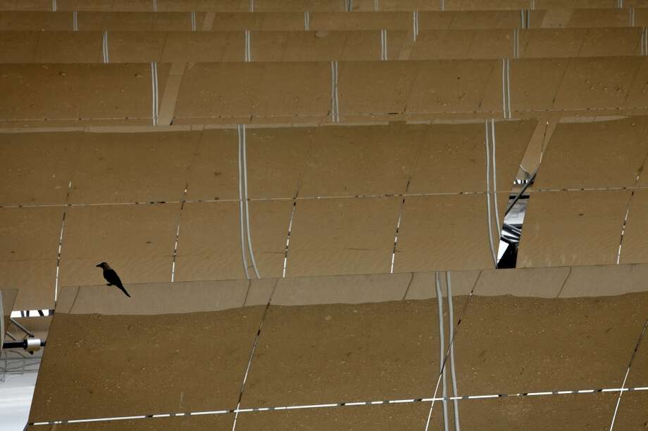 A bird sits on a reflector panel of a parabolic trough at the Godawari solar-thermal power plant, operated by Godawari Green Energy Ltd., near Nokh, Rajasthan, India, on Monday, June 10, 2013. Godawari Power & Ispat Ltd. started Asia's biggest solar-thermal plant as India limps toward clean-energy targets with prices almost half the global average. Photographer: Kuni Takahashi/Bloomberg Photo: Bloomberg