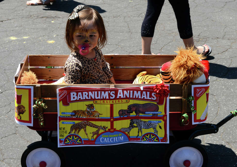 Danielle Burany, 2, of Trumbull, takes part in the Barnum Festival's Wing Ding Parade as it makes its way through Beardsley Zoo in Bridgeport, Conn. on Saturday June 15, 2013. Photo: Christian Abraham / Connecticut Post