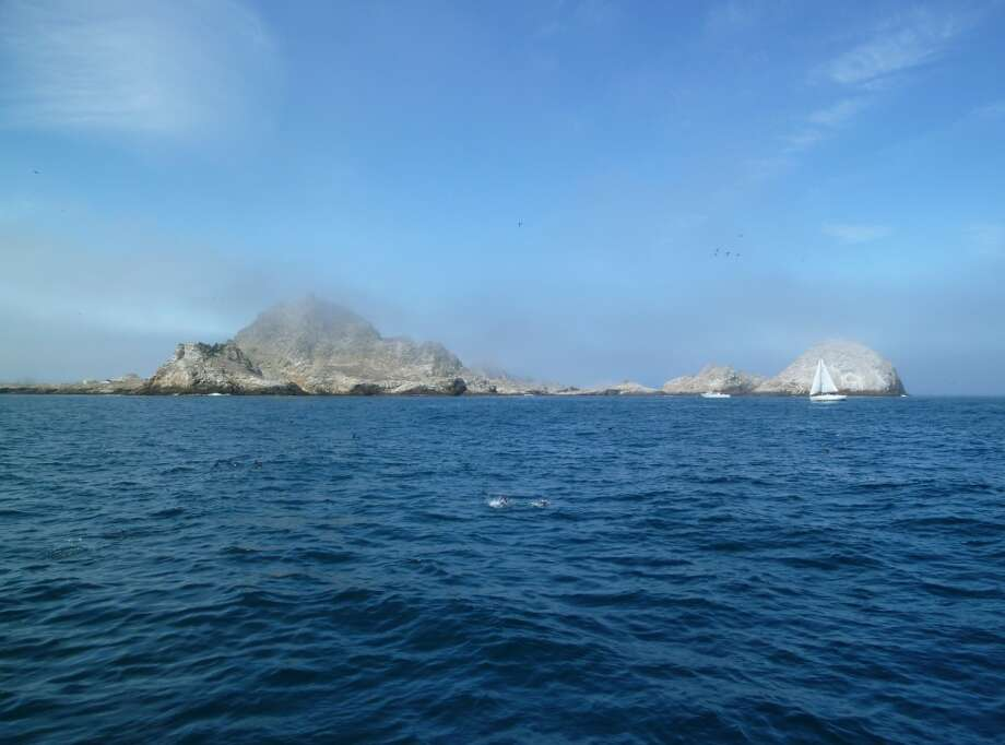 A panorama of Farallon Islands view from the south, 27 miles out to sea from San Francisco