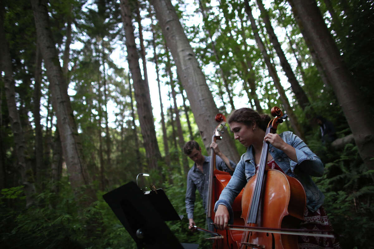 John Teske plays the double bass and Natalie Mai Hall plays the cello during a mini symphony concert in the woods of Ravenna Park ravine in Seattle. During the concert, performers played excerpts from composer Nat Evans'