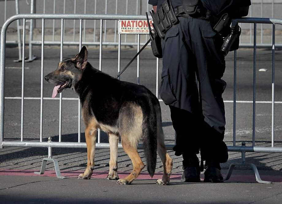 San Francisco police used dogs as they watched the perimeter of the race Sunday June 16, 2013. Thousands ran in the annual San Francisco Marathon, which was held earlier this year to accommodate the America's Cup races. Photo: Brant Ward, The Chronicle